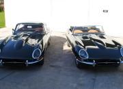 dwa jaguary